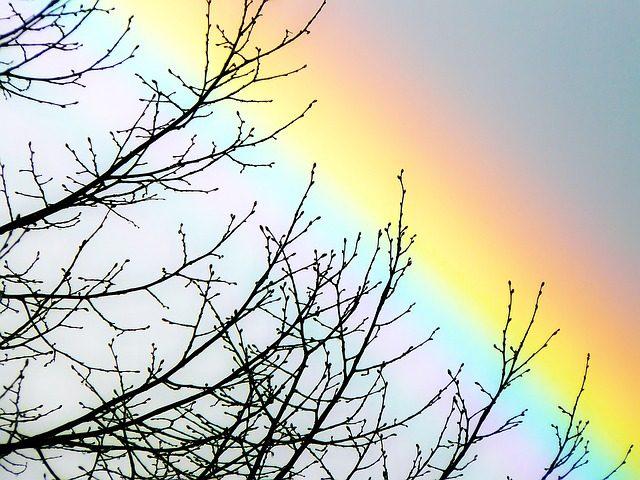 rainbow-1201862_640