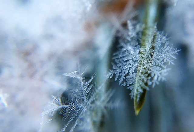 frost-1209402_640