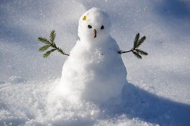 snow-man-1227476_640