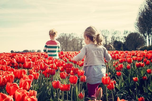 春のプラバンBOT祭